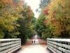 Fall Color near Pontotoc