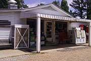 Tanglefoot-Algoma-store